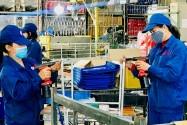 Rà soát 29 luật để tháo gỡ khó khăn cho sản xuất, kinh doanh