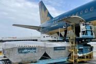 Vietnam Airlines bố trí thêm máy bay vận chuyển thiết bị y tế chống dịch