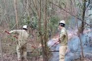 Bảo vệ an toàn đường dây 500 kV Bắc-Nam trong sự cố cháy rừng